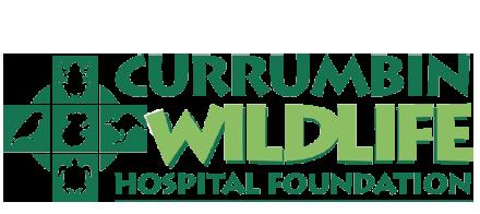Currumbin Wildlife Hospital